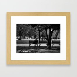 Evenings in the Park Framed Art Print