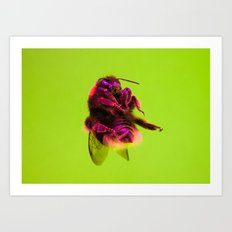 Bugged #33 Art Print