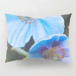 Himalayan Blue Poppy Pillow Sham
