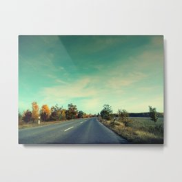 Winding highway road with trees. Metal Print