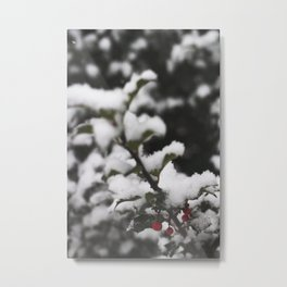 Winter Holly Metal Print