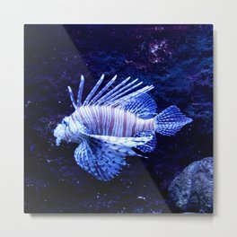 Sea World Lion Fish Metal Print