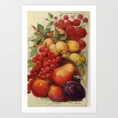 Wild fruit Art Print