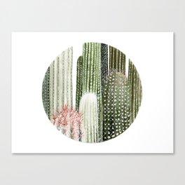 Circular Cacti Canvas Print