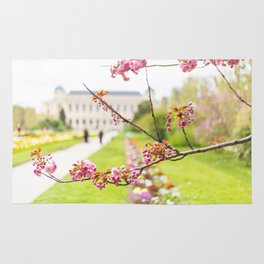 Paris In Springtime Rug