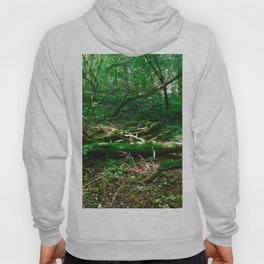 Boughs Photography Hoody