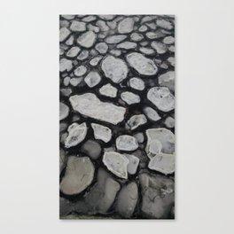 Nature's Geometry Canvas Print