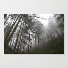 Forest Fog in Portland Canvas Print