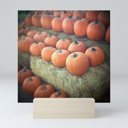 Pumpkins On Display Mini Art Print