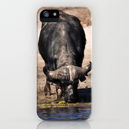 Cape Buffalo. iPhone Case