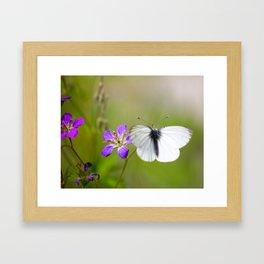 White Butterfly Natural Background Framed Art Print