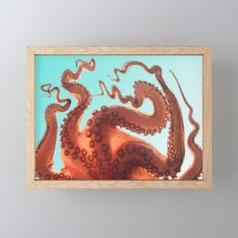 Is They Octopus Legs?? Framed Mini Art Print