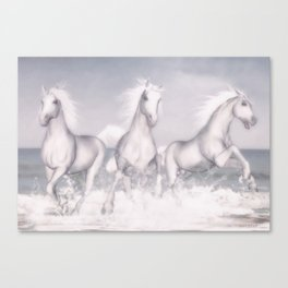 White Horses of the Camargue Canvas Print