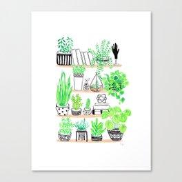 Plant shelfie Canvas Print