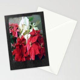 Mixed color Poinsettias 3 Blank P4F0 Stationery Cards