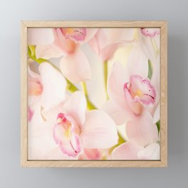 Orchid Flower Bouquet On A Light Background #decor #society6 #homedecor Framed Mini Art Print