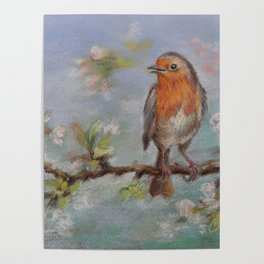 Red Robin Small bird on a blooming twig Wildlife spring scene Pastel drawing Poster