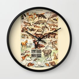 Cute Animals // Fourrures by Adolphe Millot 19th Century Science Textbook Diagram Artwork Wall Clock
