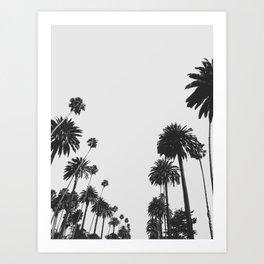 Palm Spring California, Palms Art Print