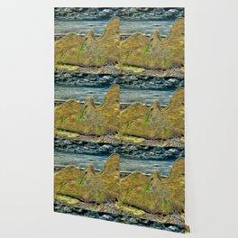 Boulder Wallpaper