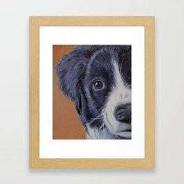 Pup Framed Art Print