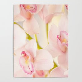Orchid Flower Bouquet On A Light Background #decor #society6 #homedecor Poster