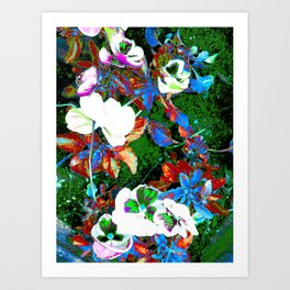 Vines of the Sole Art Print
