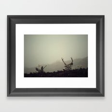 Eye in the Sky Framed Art Print