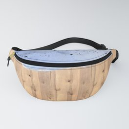The Silver Lining Fanny Pack