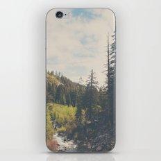 into the wild ... iPhone & iPod Skin