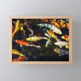 Colorful Koi Framed Mini Art Print