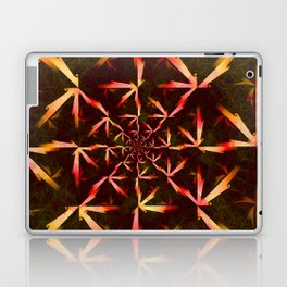 Formula XXIV Laptop & iPad Skin