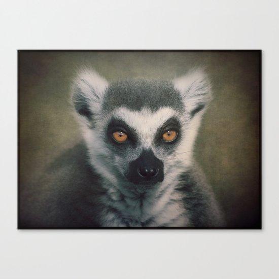 Portrait of a Lemur Canvas Print