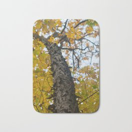 Autumn in the Catskill Mountains Bath Mat