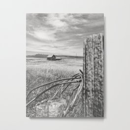 Isolate Metal Print