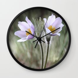 Pasqueflower Wall Clock