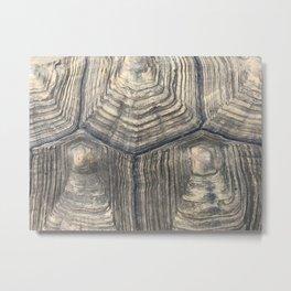 Tortoise shell 2 Metal Print