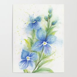 Veronica, Floral Watercolor Poster