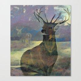 """White Tail Deer"" Canvas Print"