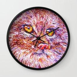 Pallas ' cat 12 Wall Clock