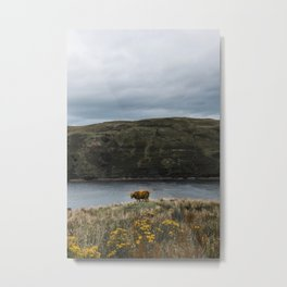 Highlander in the wild Scotland | Ilse of Skye , Highlands | photoprint - blue - green - travel Metal Print