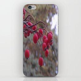 Fall berries iPhone Skin