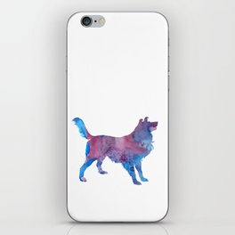 Border collie iPhone Skin
