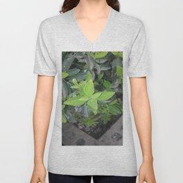 Pretty green. Unisex V-Neck
