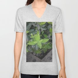 Pretty green. Unisex V-Neck