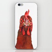 chicken iPhone & iPod Skins featuring Chicken by LouiseDemasi