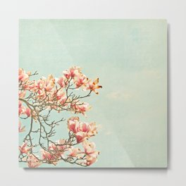 Pink Magnolia Flowers on Aqua Blue Green and French Script Metal Print
