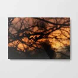 The Setting of the Evening Sun Metal Print