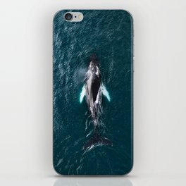 Humpback Whale in Iceland - Wildlife Photography iPhone Skin