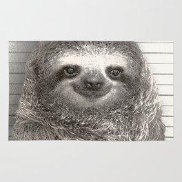 Sloth in a Mugshot Rug